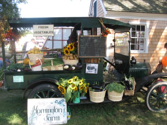 Photo: Morning Glory Farm